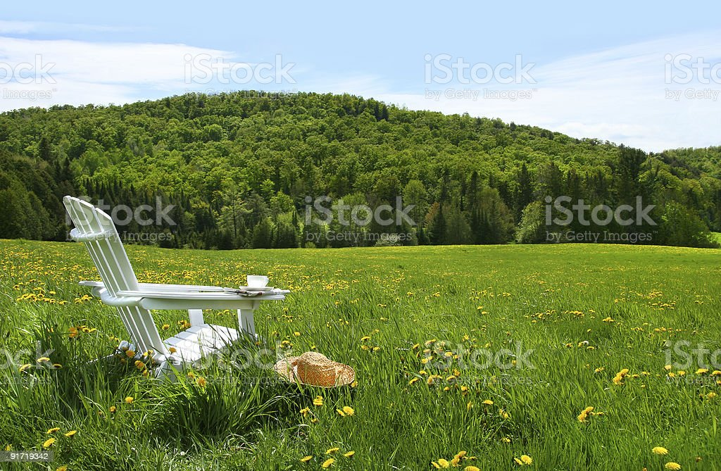 White adirondack chair in a field of tall grass stock photo