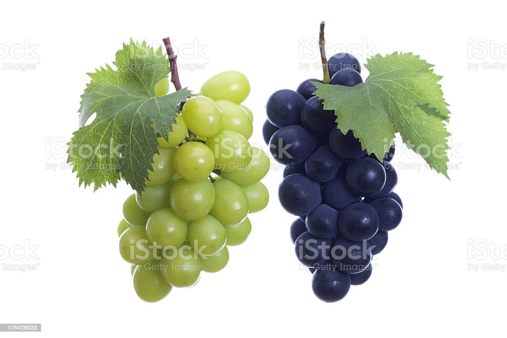 White and Black grapes  stock photo