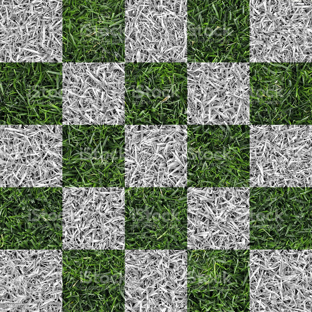 white and green checkered lawn stock photo
