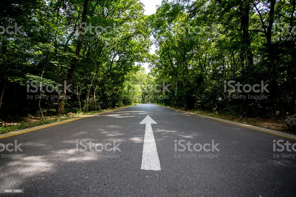 white arrow on driveway in woods stock photo