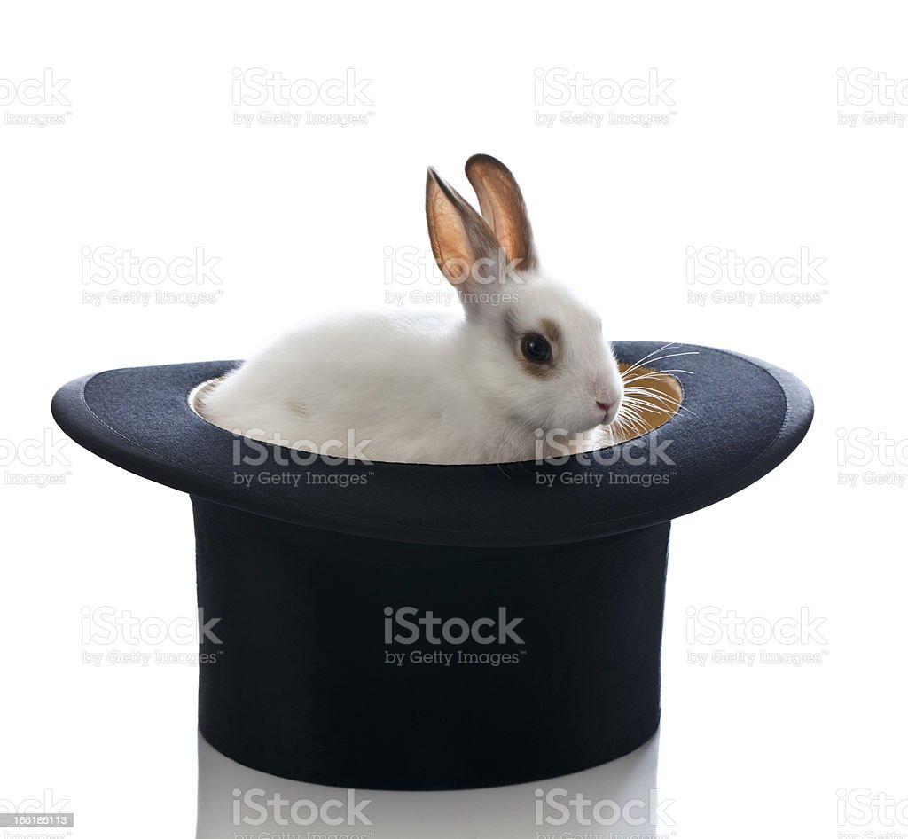 White Baby Bunny and Top Hat stock photo