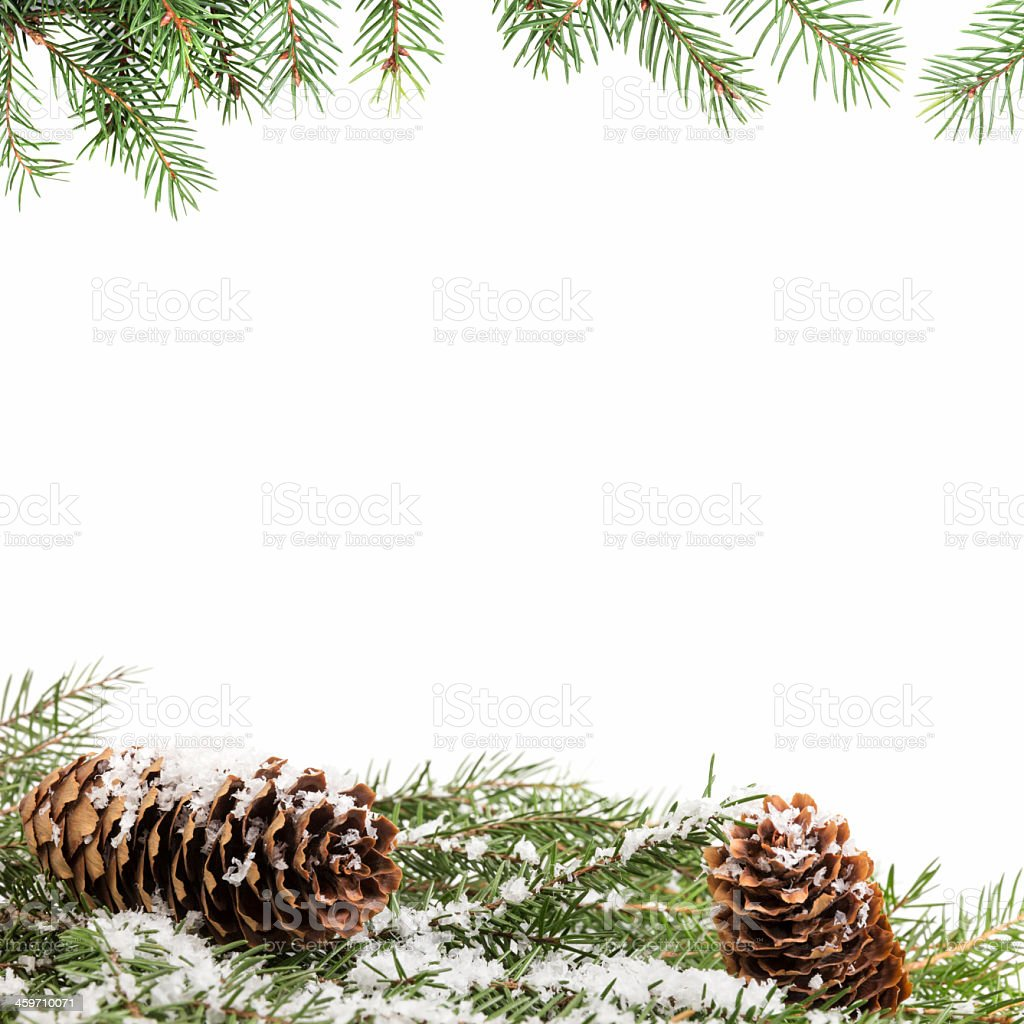 White background framed by for branches and snow stock photo