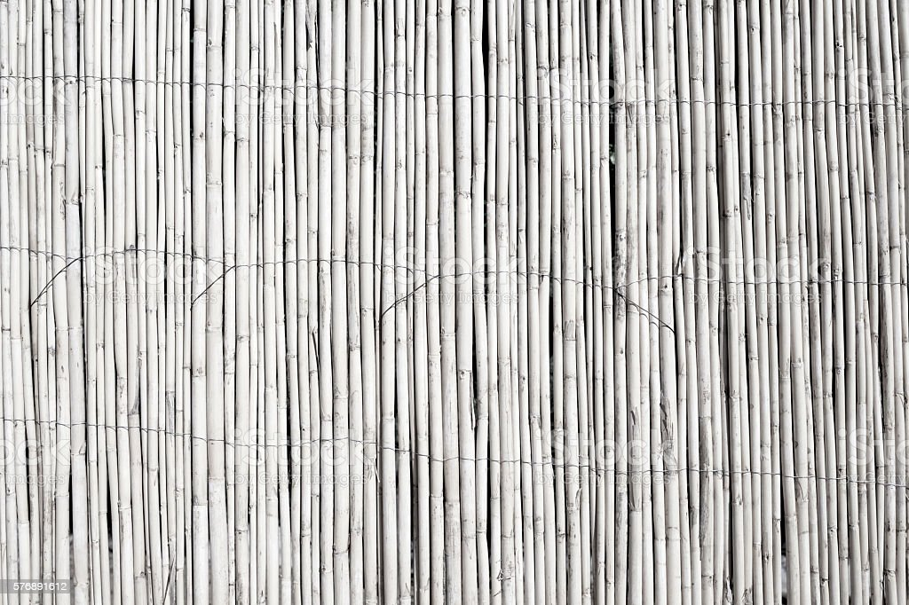White Bamboo Backgrounds stock photo