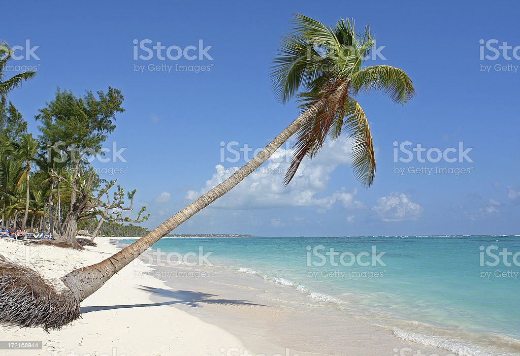 White Beach in Dominican Republic royalty-free stock photo