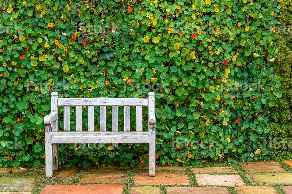 White bench with the bush Background stock photo
