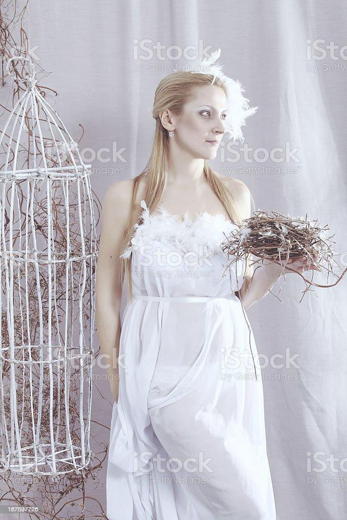 White Bird Lizenzfreies stock-foto