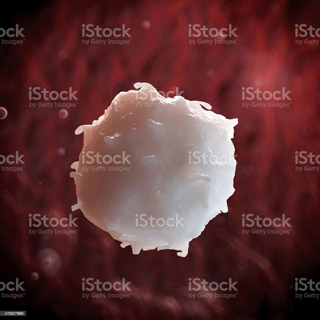 white blood cell royalty-free stock photo