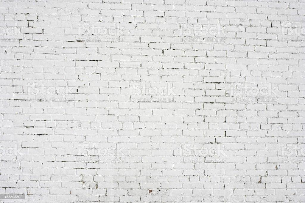 белый фон без рисунка картинки