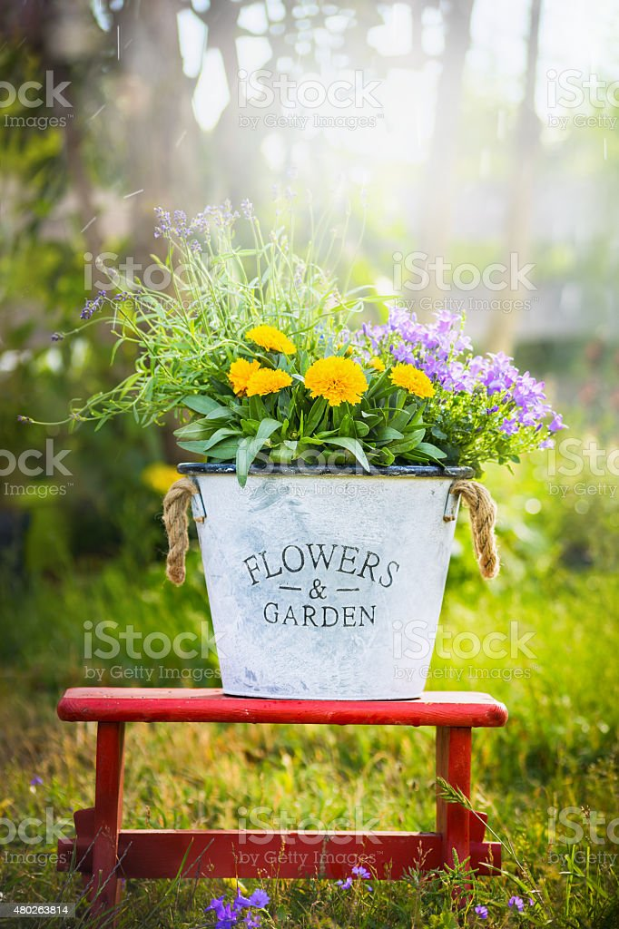 White bucket with garden flowers on red little stool stock photo