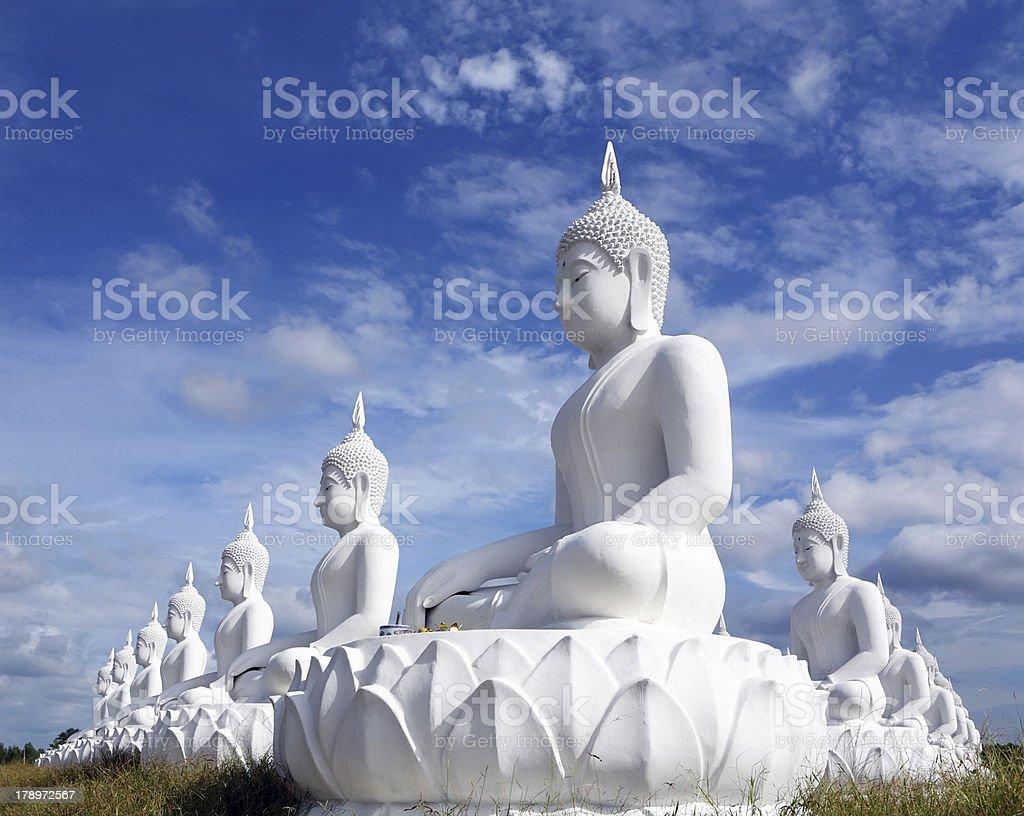 White buddha statue royalty-free stock photo