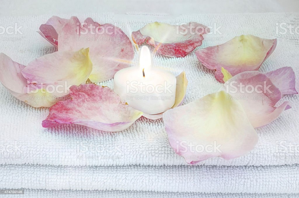white burning candle surrounded by rose petals stock photo