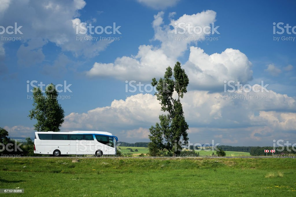 White bus traveling on the road next to tall trees stock photo