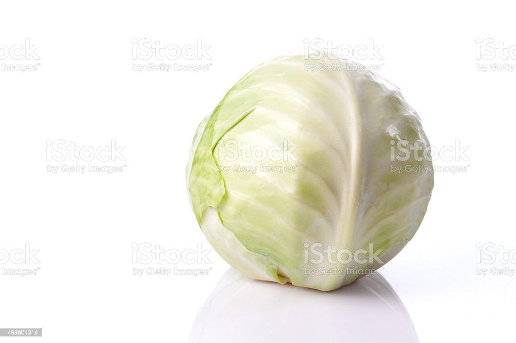 White Cabbage, white background stock photo