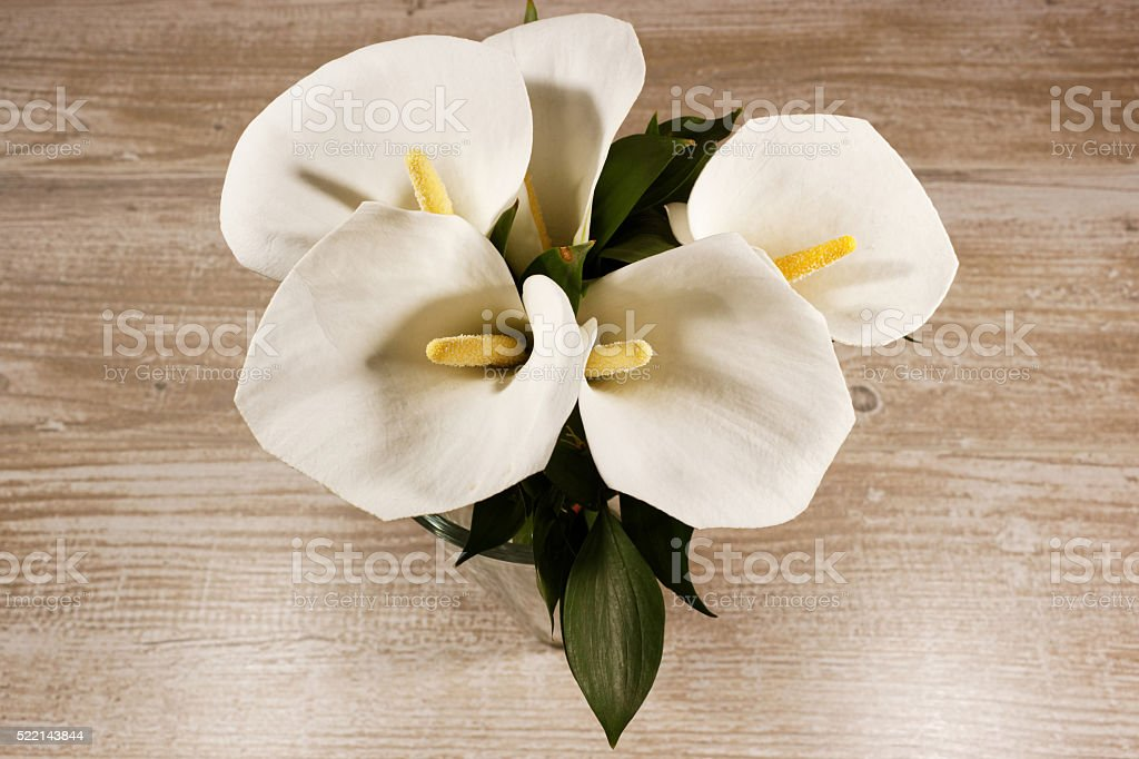 White calla lilies in the vase on the wooden background stock photo