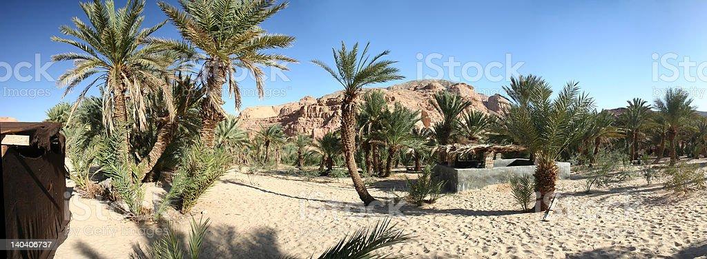 White canyon oasis royalty-free stock photo