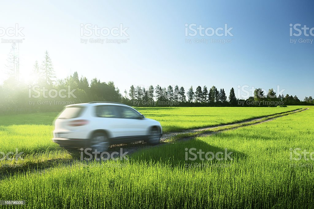 White car driving along path in middle of green grass stock photo