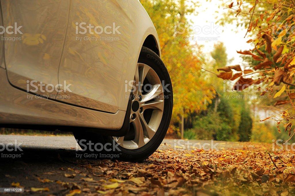 White car on autumn background stock photo