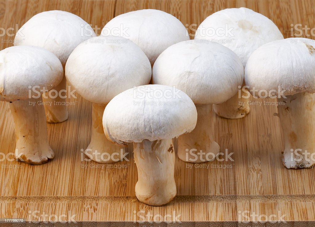 white champignons on a wooden board royalty-free stock photo