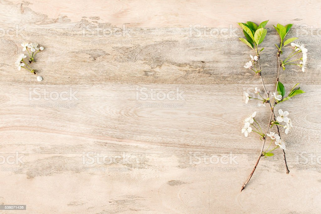 white cherry blossoms on wooden table stock photo