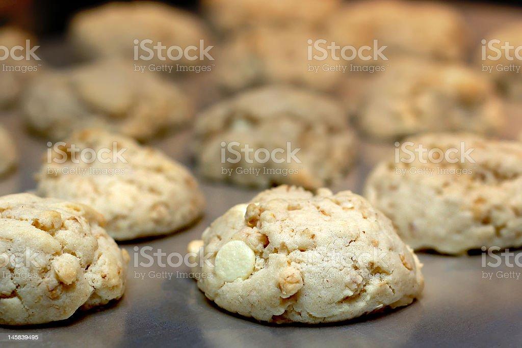 white chocolate cookies royalty-free stock photo