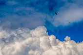 White Cloud Formation