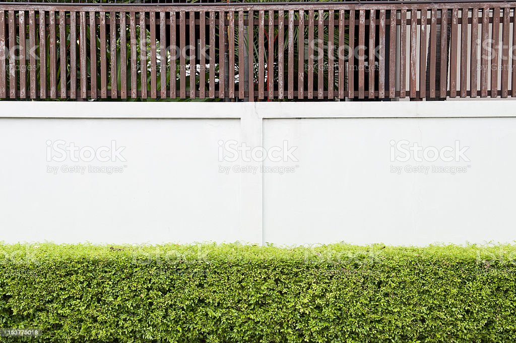 White concrete and wooden wall with green bush royalty-free stock photo
