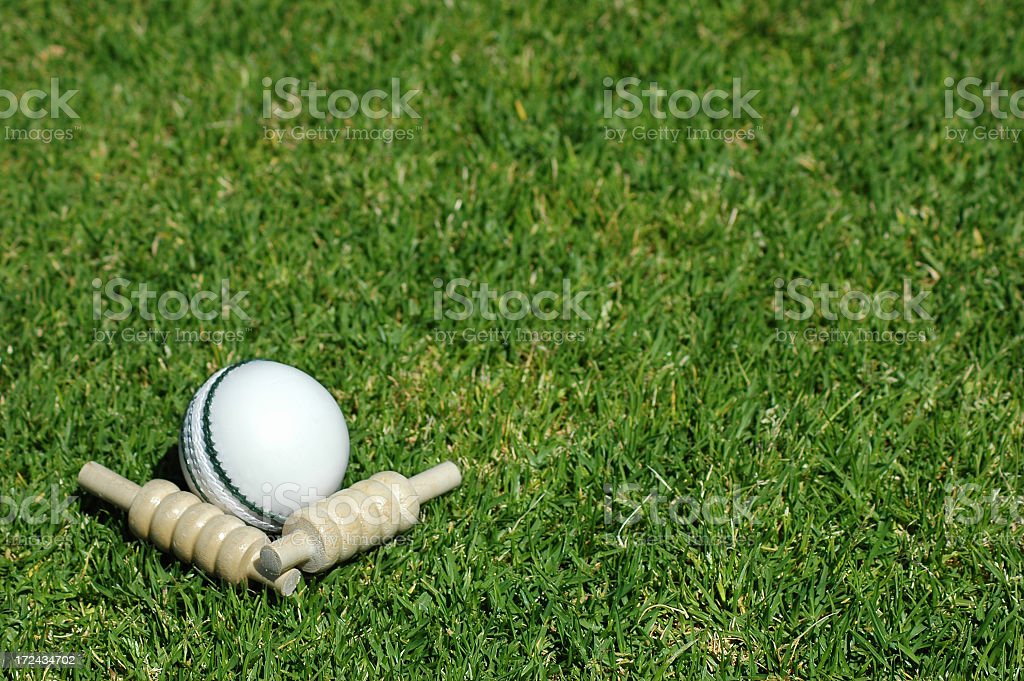 White cricket ball and bails lying in grass stock photo