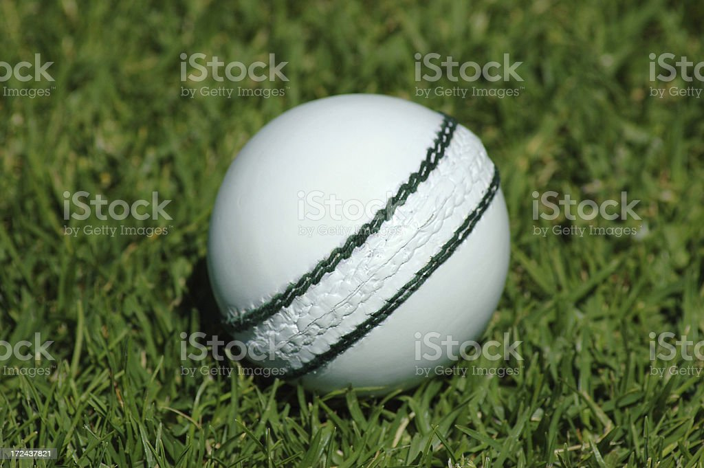 White cricket ball on grass stock photo