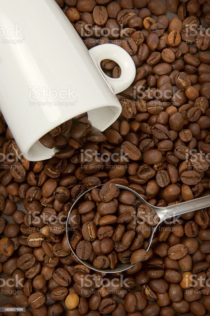 white cup against coffee-bean stock photo