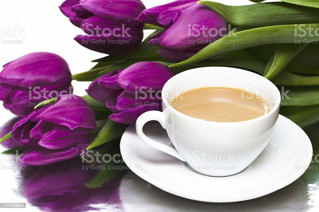 Branca Xícara de café com Violeta Túlipas foto de stock royalty-free