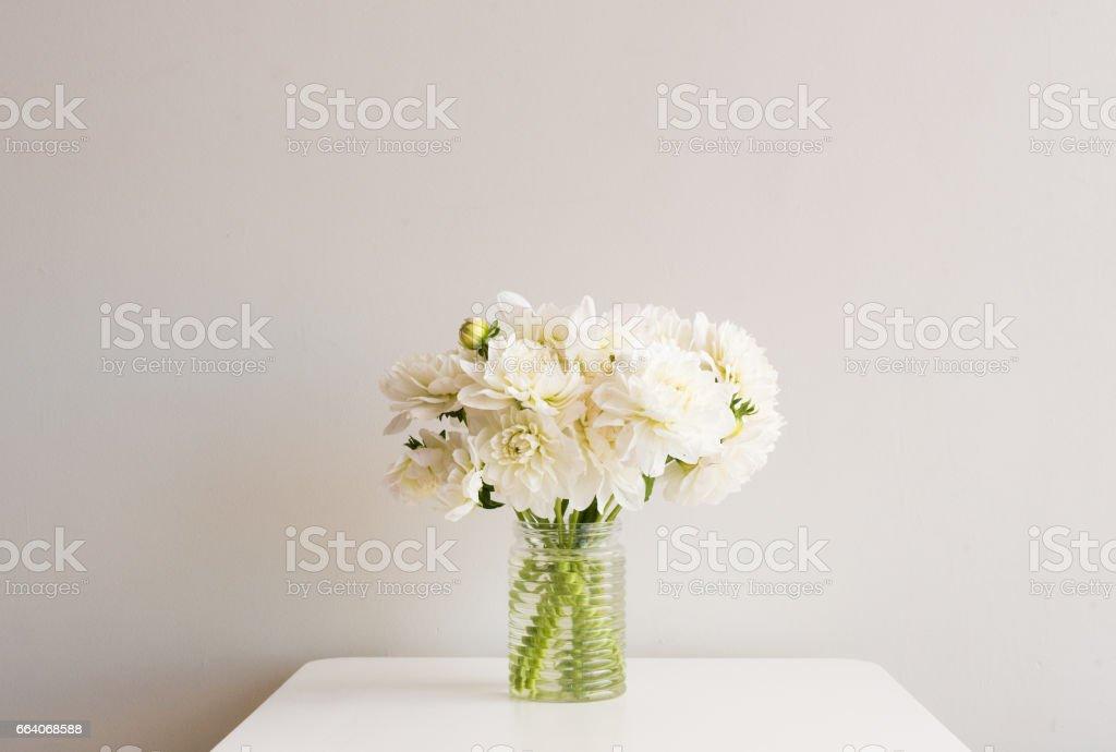 White dahlias in glass jar on table stock photo