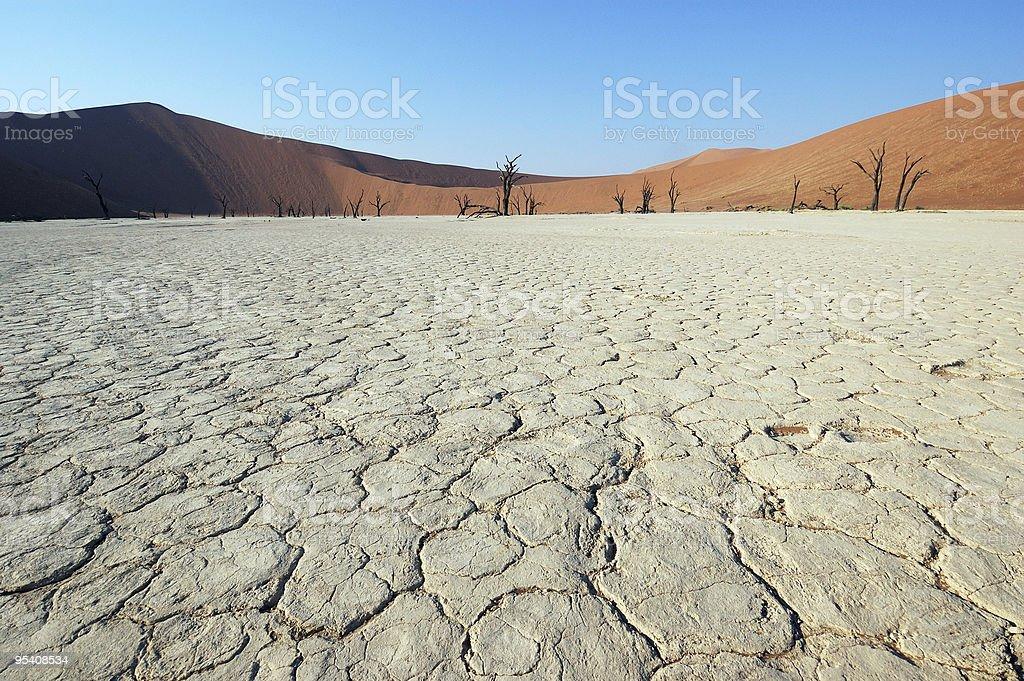 White Desert - Deadvlei royalty-free stock photo