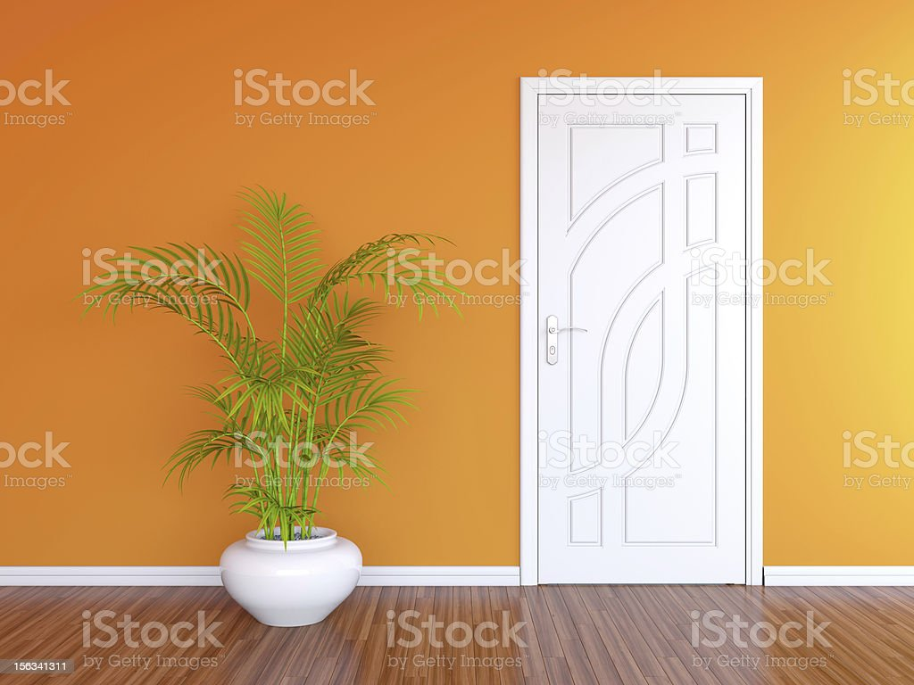 White door and green plant against orange wall stock photo