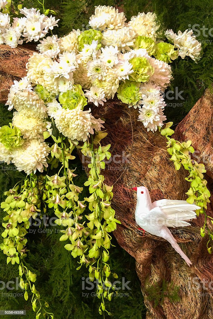 White Dove on Paper Tree with Flowers, Orchid and Leaves stock photo