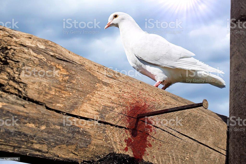 White dove on the empty cross stock photo