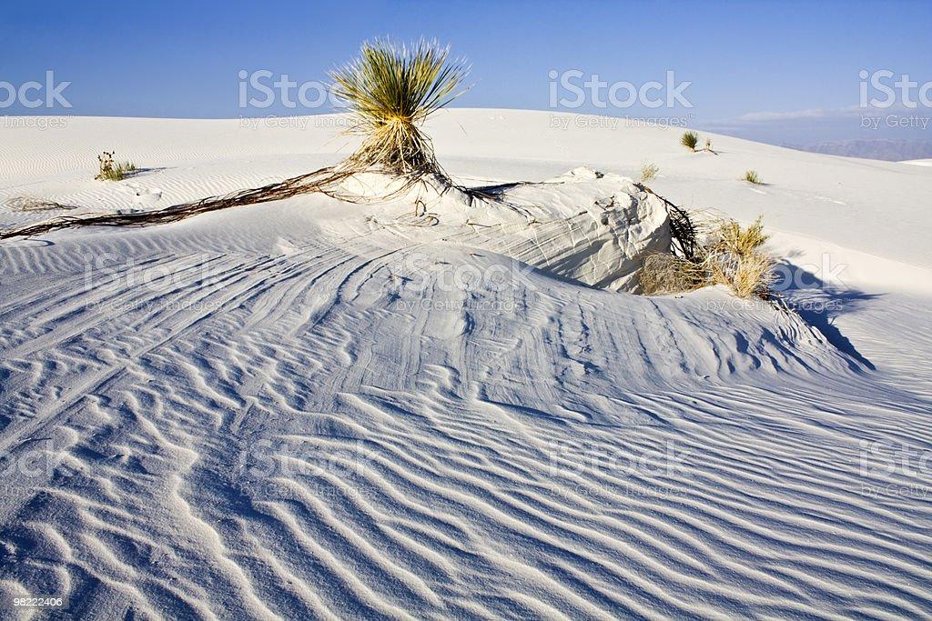 White Dunes National Park stock photo