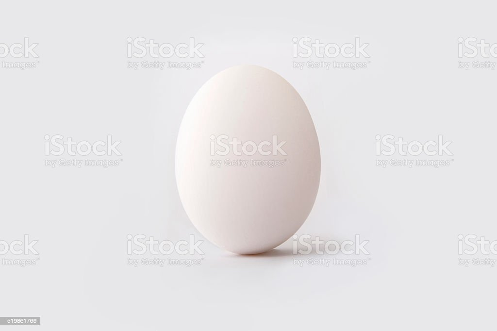 White egg stock photo