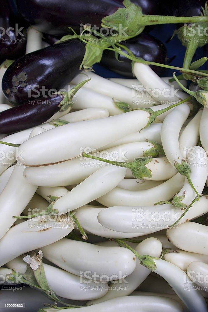 White Eggplant stock photo