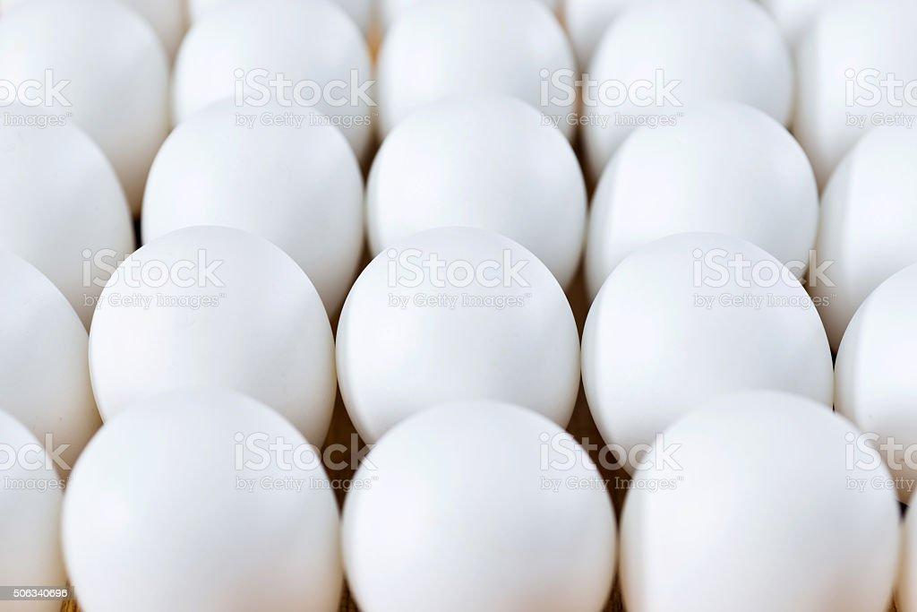 White eggs stock photo