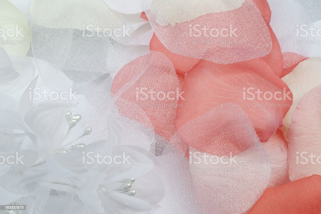 White Fabric Flowers And Fresh Petals royalty-free stock photo