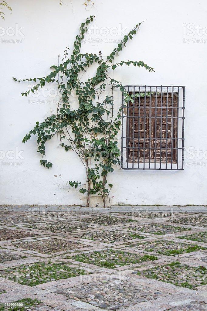 White facade with window stock photo