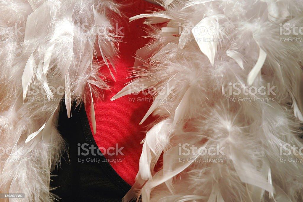 White Feather Boa royalty-free stock photo