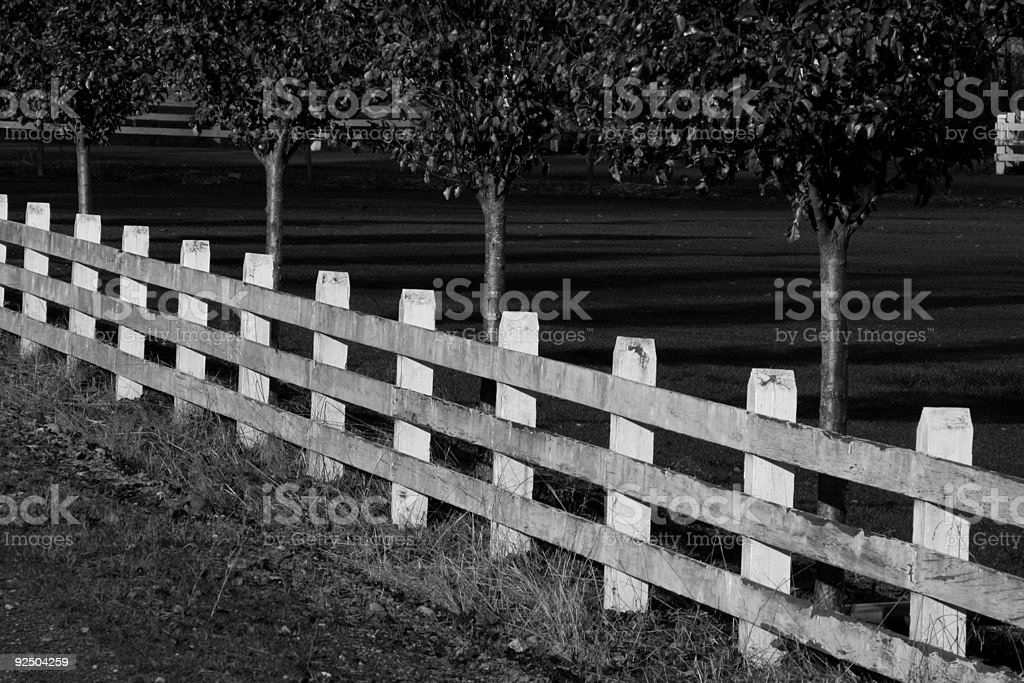 White Fence b&w royalty-free stock photo