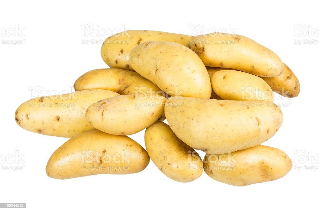 White fingerling potatoes isolated on white stock photo