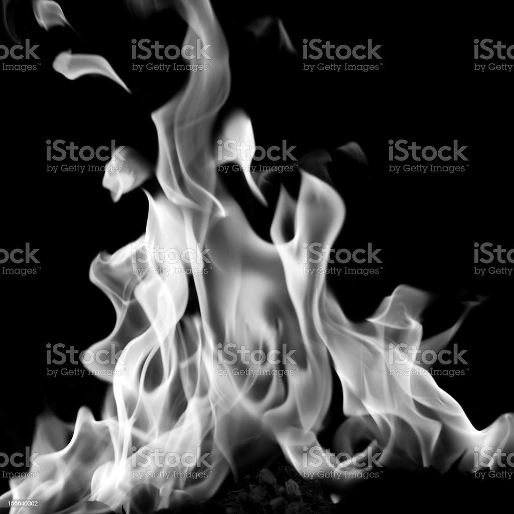 white flame royalty-free stock photo