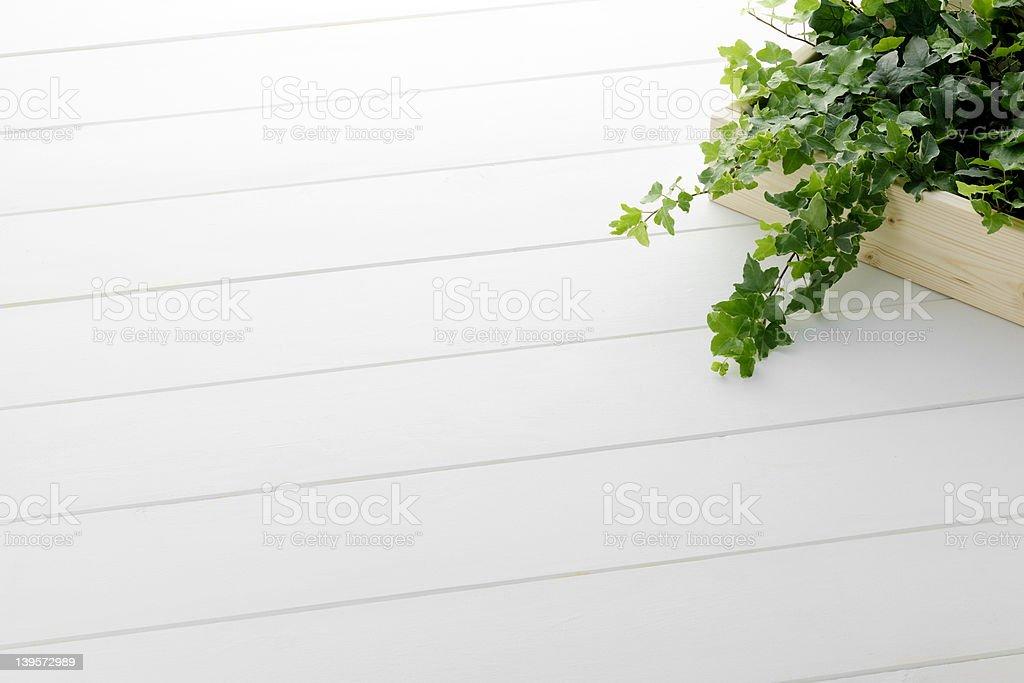 White floor royalty-free stock photo