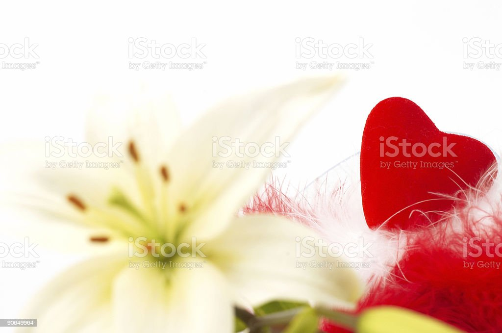 white flower and red heart stock photo