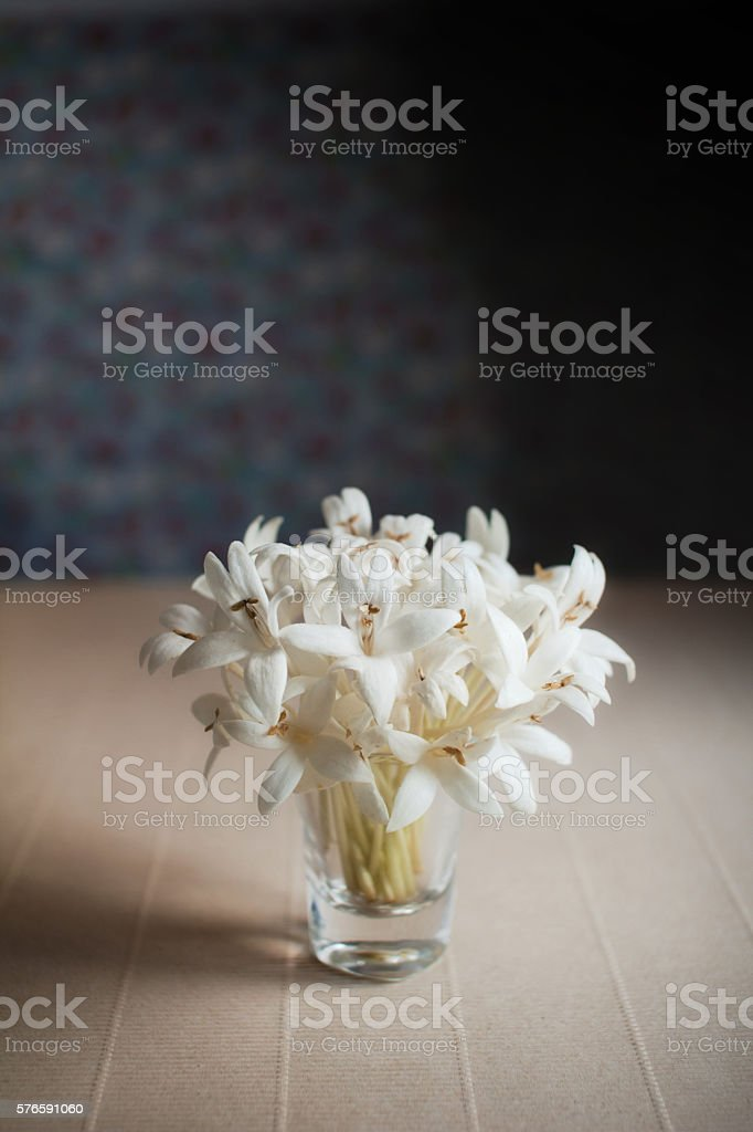 White Flower Blossom in House with Natural Light stock photo