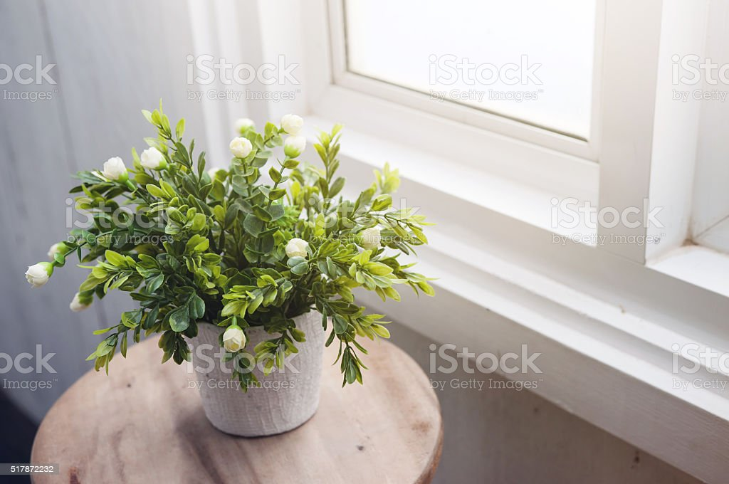 White flower in white flowerpot on wood table stock photo