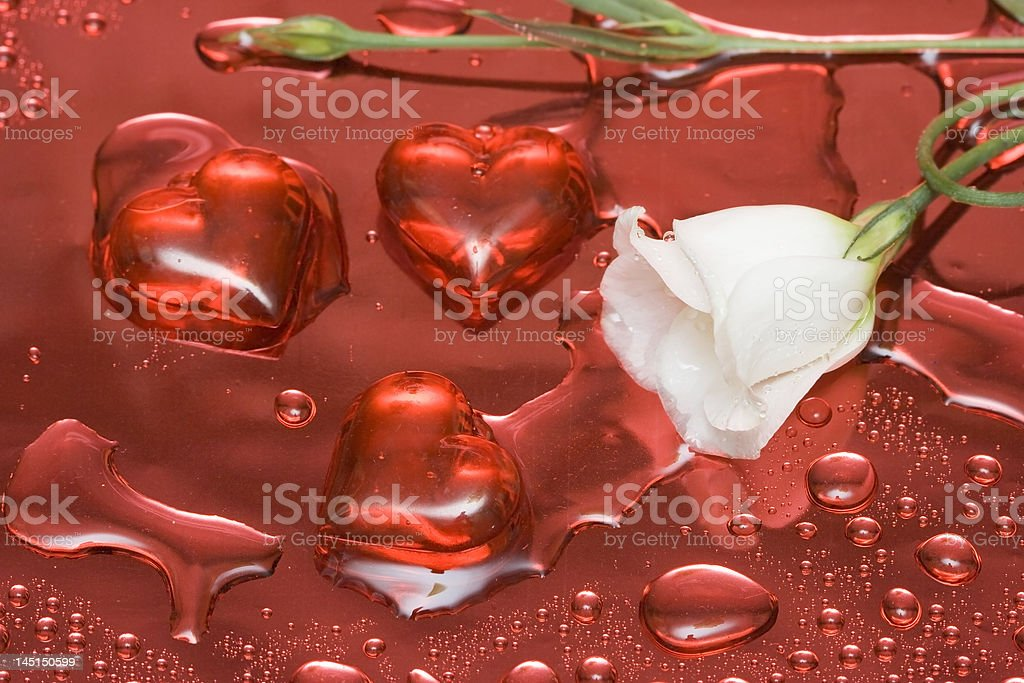 Flor branca com corações vermelhos foto de stock royalty-free